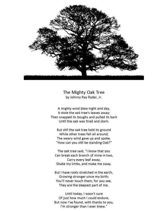 Mighty Oak Tree Wisdom To Live By Tree Poem Tree Quotes Quotes
