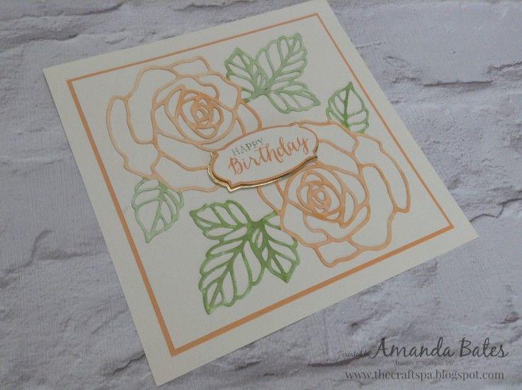 Peekaboo Peach Rose Wonder