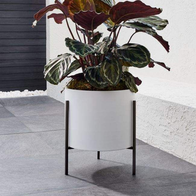 Shop For Crate Barrel Dundee Low White Planter With 400 x 300