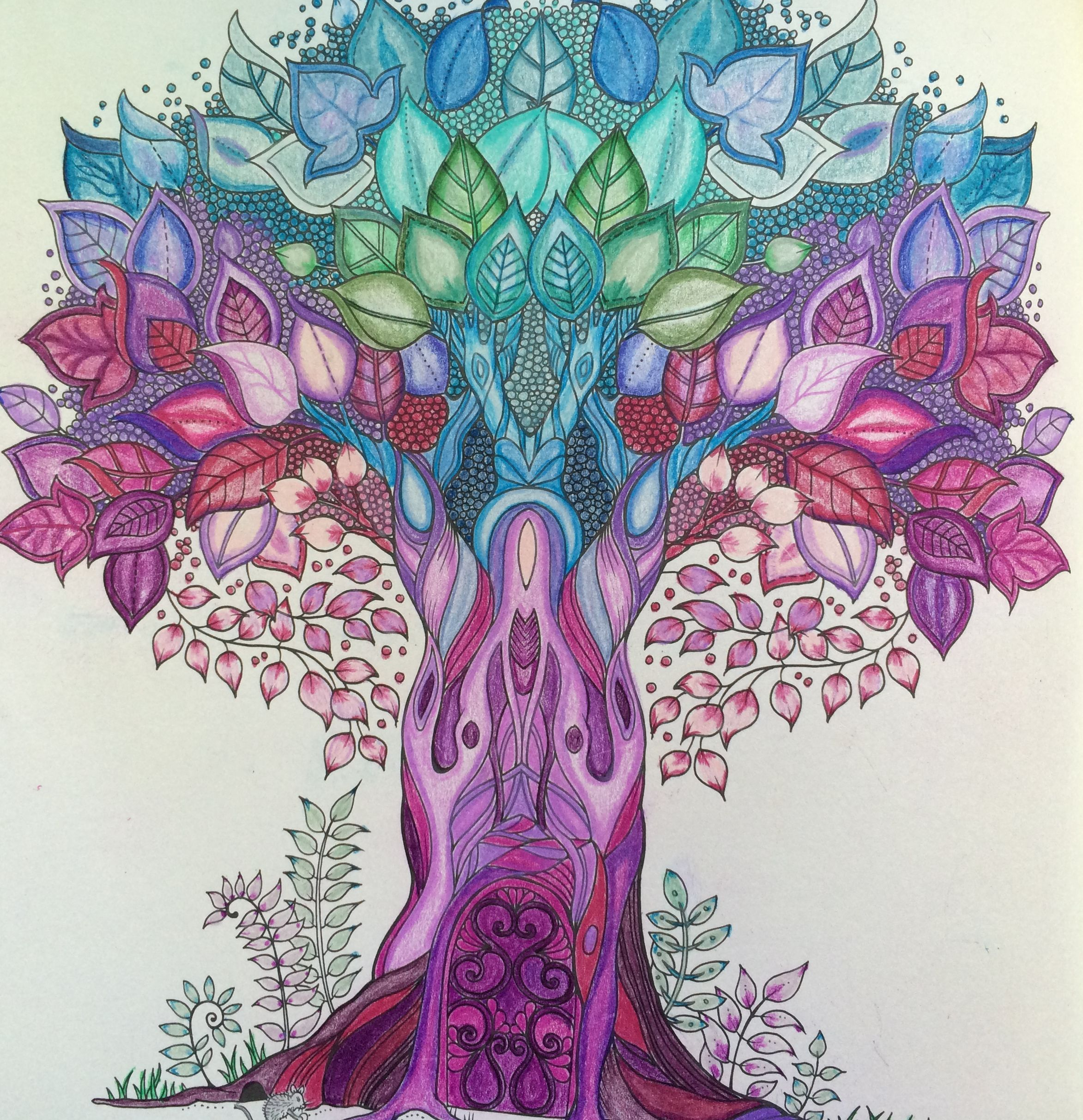 My Enchanted Forest Coloring Book