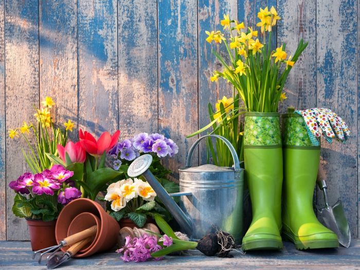 Gartenzubehör  gartenzubehör gartenpflanzen primel narzissen bummistiefel grün ...