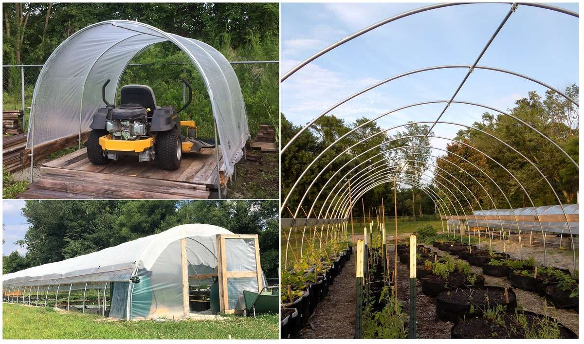 Build a cheap diy canopy carport or greenhouse in an