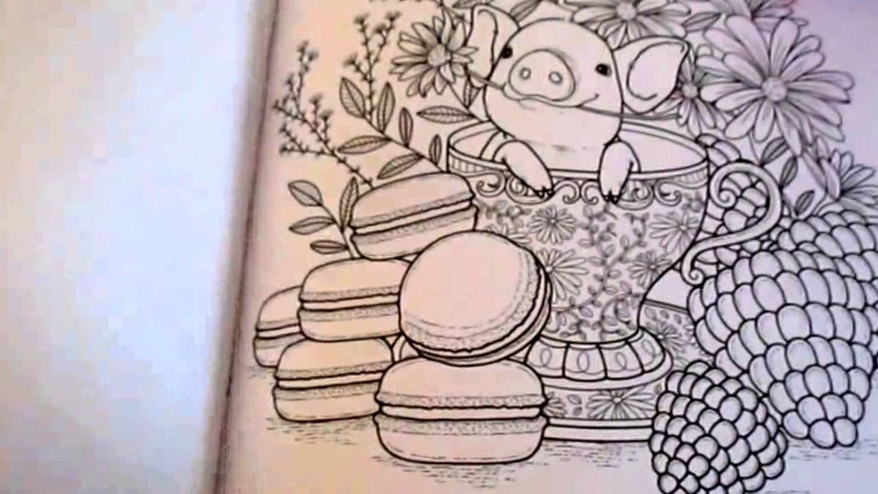 The coloring book review - Impressions Of Nature Adult Coloring Book Review This Is A Lovely Budget Coloring Book