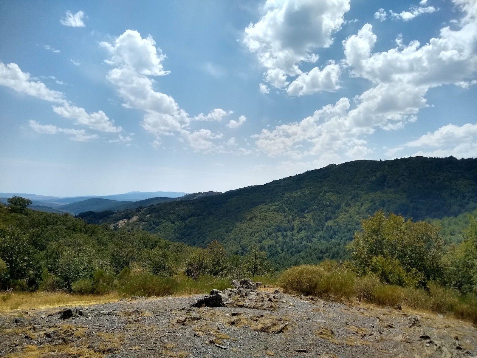 Vista del bosque desde lo alto del monte, se ven los distintos colores de los robles, pinos y hayas, es precioso y transmite paz