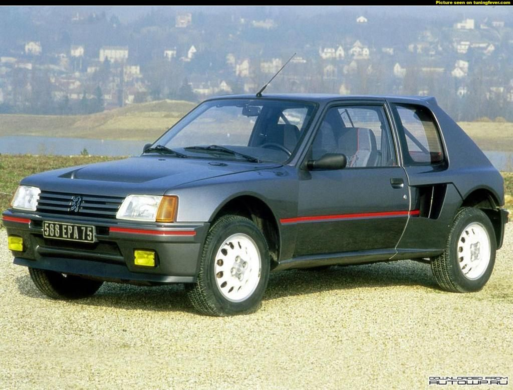 My first car, the Peugeot 205 GTi. Did a lot of stupid things in ...
