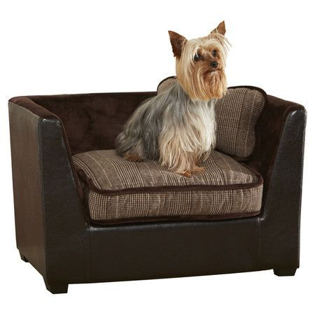 Found It At Wayfair Modern Bed In Brown By Enchanted Home Pet