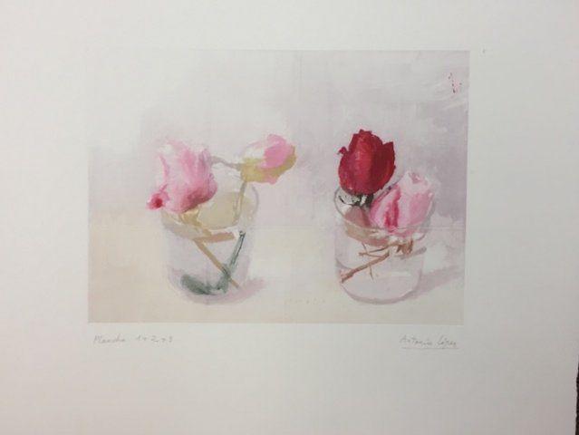 Antonio Lopez Garcia - Rosas de invierno (plancha 1+2+3) en Galería la Aurora