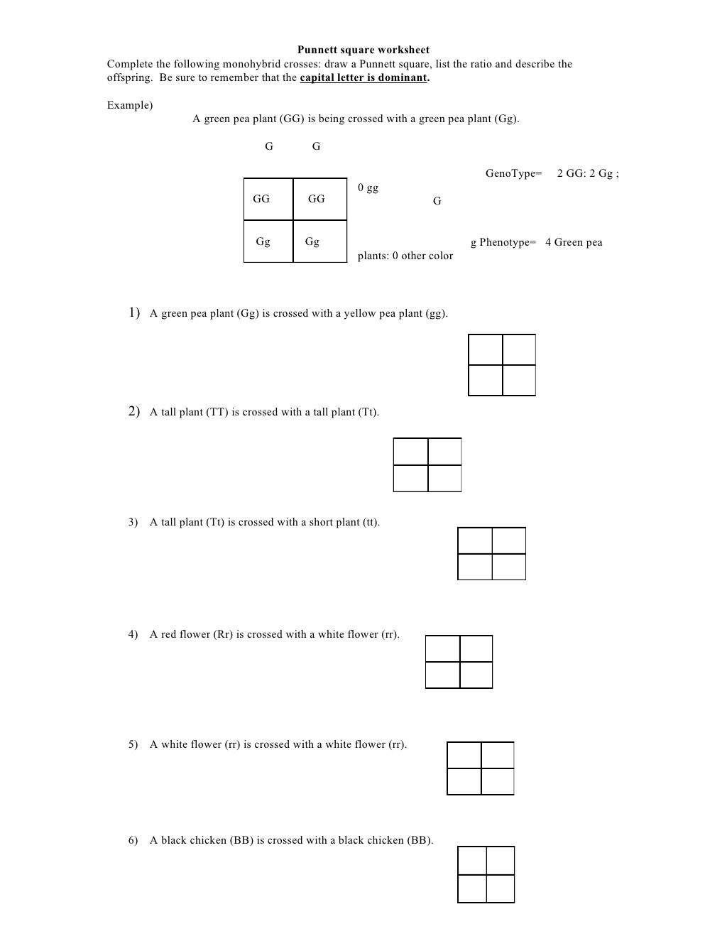 Worksheets Punnett Squares Worksheet punnett square worksheet by kpolson via slideshare beauty tips slideshare