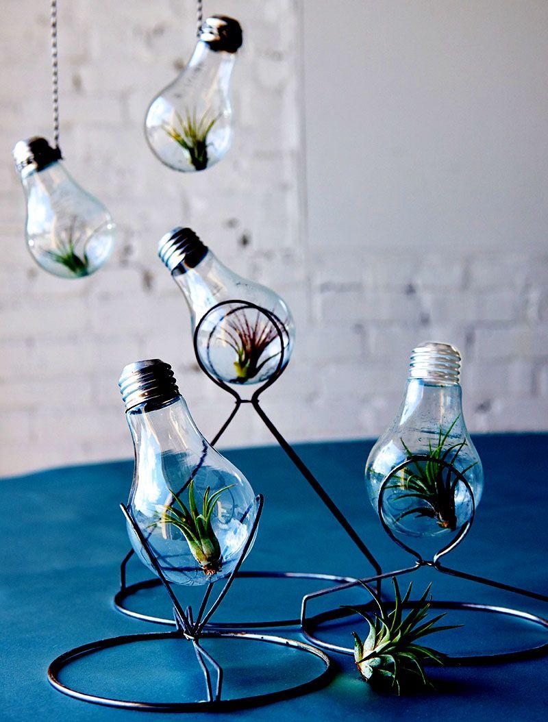 Light bulb invention interior design pinterest light bulb