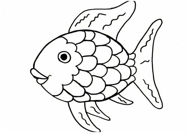 40+ Malvorlage Fisch A4 Regenbogen fisch buch