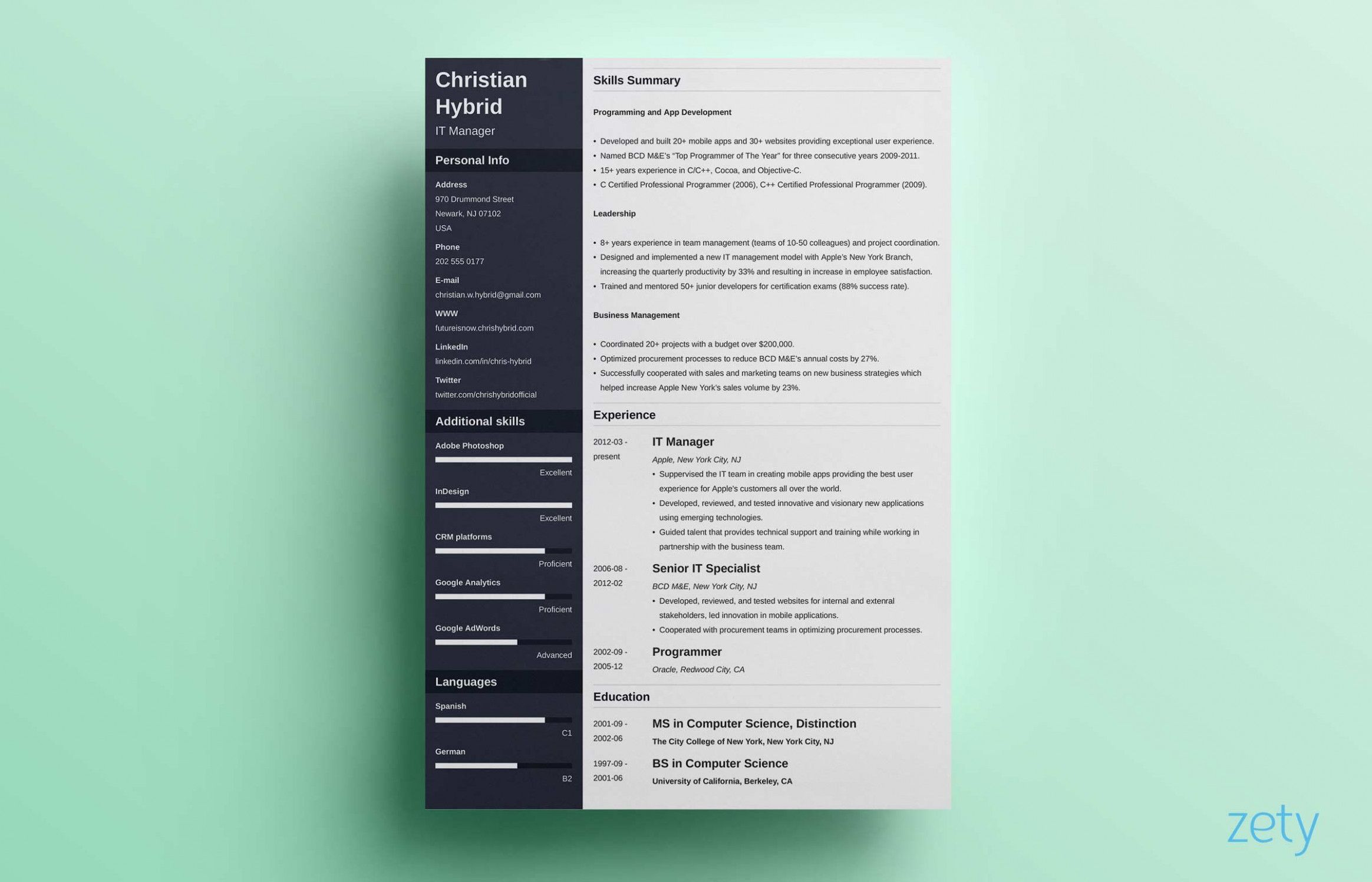 12 Pattern Resume Zety in 2020 Resume template, Resume