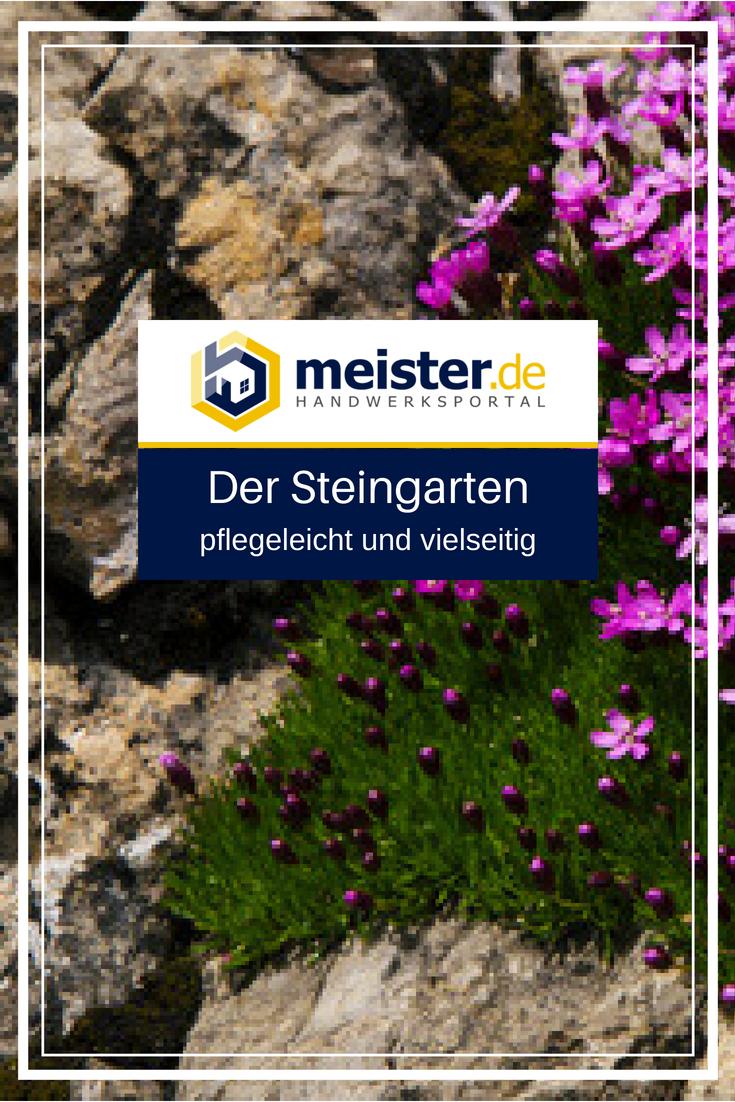 Pflegeleicht Und Vielseitig Der Steingarten Meister De Steingarten Garten Bepflanzung