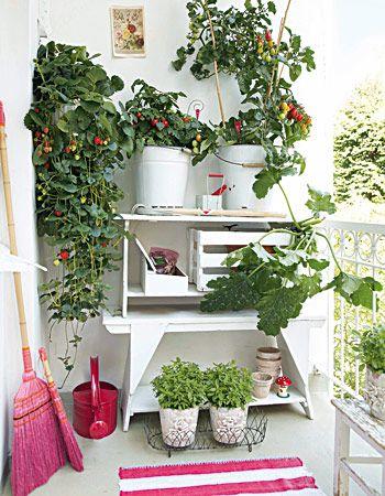 Balkon-gestaltung: Lust Auf Frische Früchte? | Pflanzen, Regale ... Kleiner Balkon Tipps Gestaltung Oase