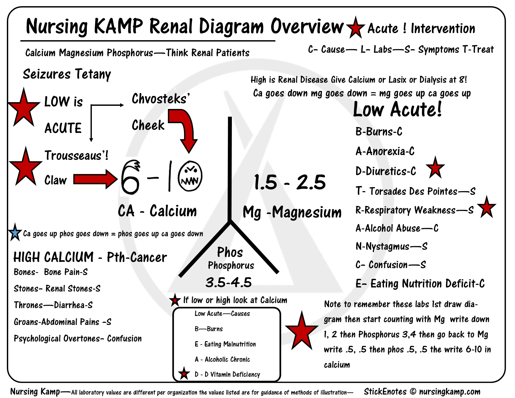 Renal Diagram Calcium Amp Phosphorus And Magnesium Focusing On Acute Is Low And High Is Chronic