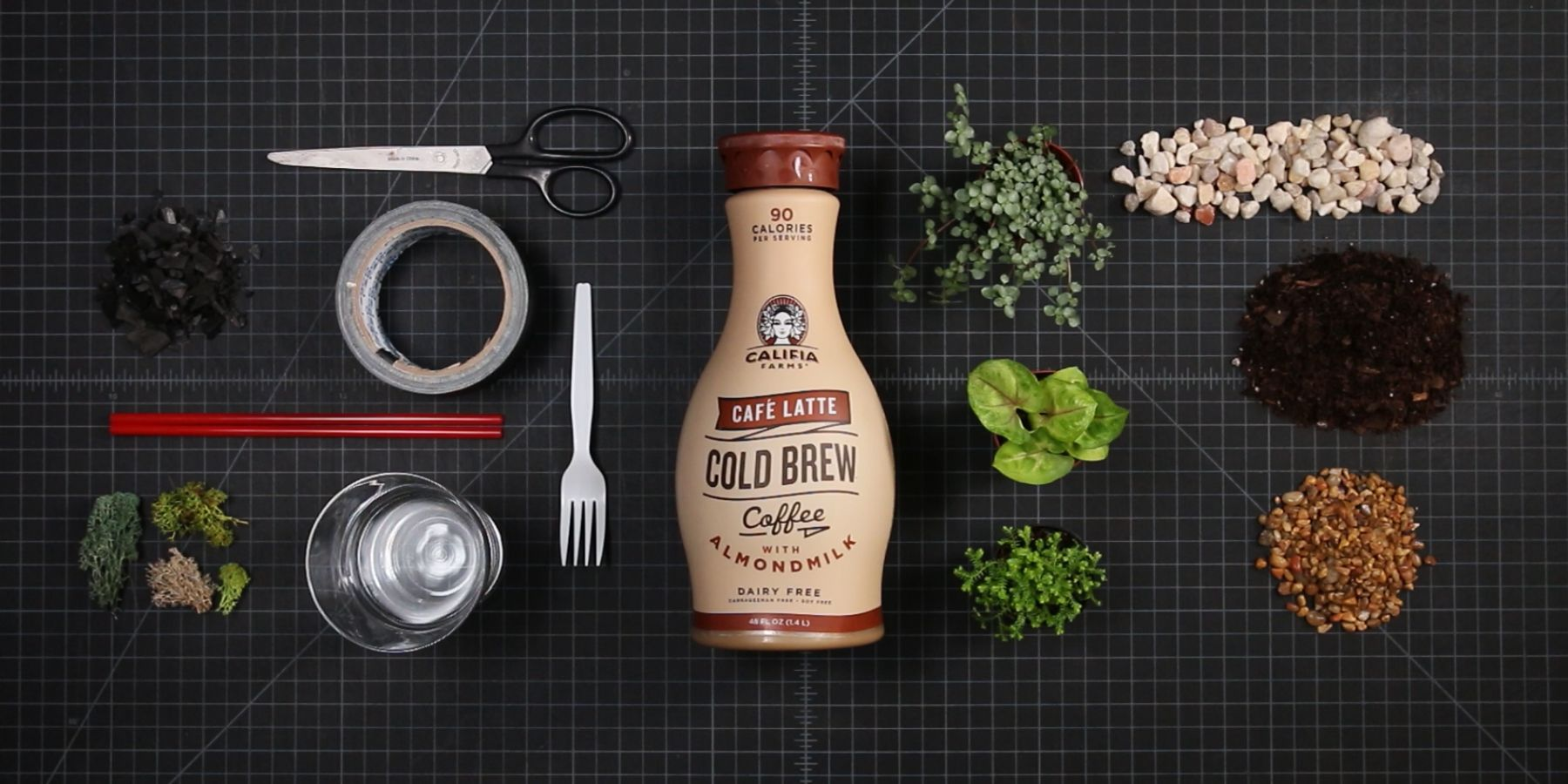 Transform your Califia bottle into an indoor garden — no green thumb  required.