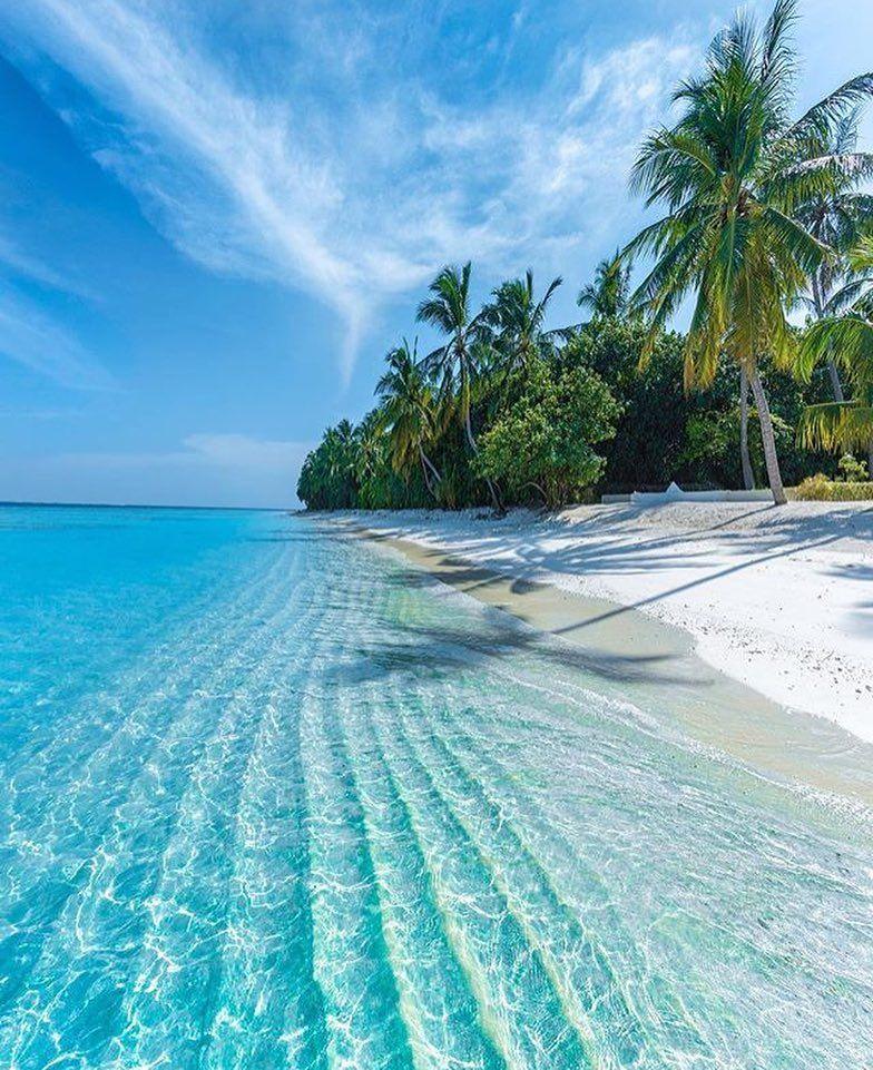 Maldives Beach: PicPublic On In 2019