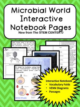 Microbes interactive science notebook pinterest venn diagrams 24 vocabulary flip pages bacteria vs virus venn diagram research scientist foldable sketch a bacteria virus ccuart Image collections
