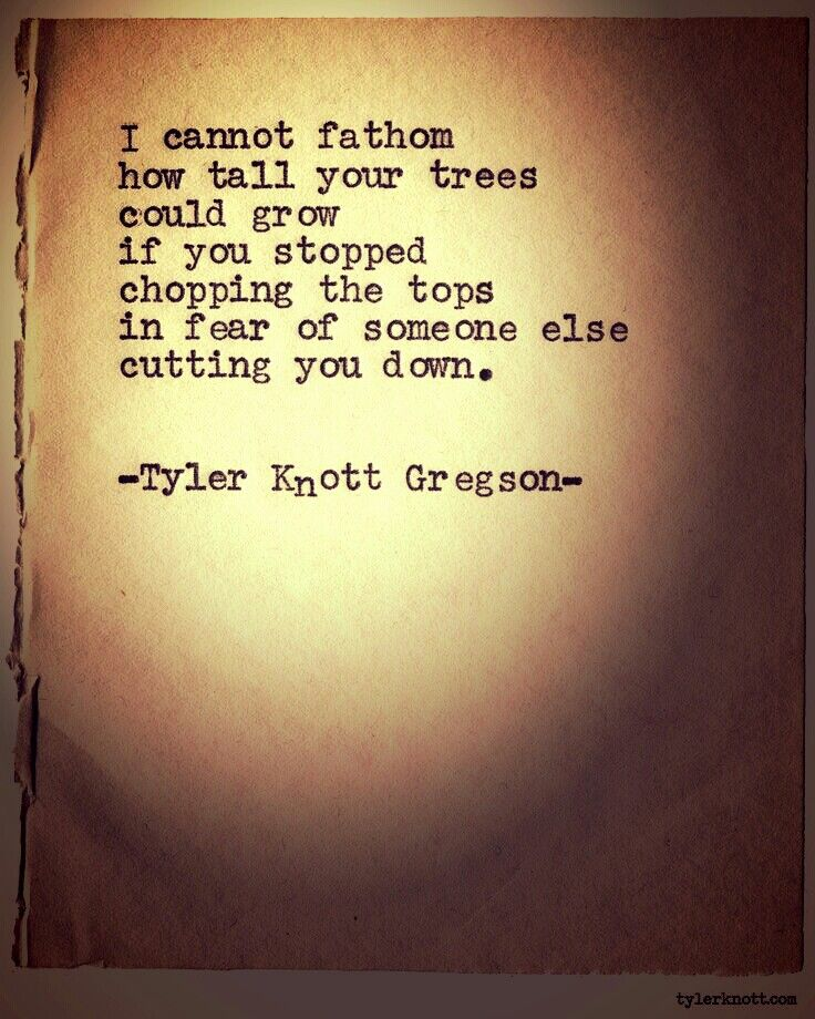 I cannot fathom how tall your trees could grow if you stopped chopping the tops in fear of someone else  cutting you down.                -Tyler  Knott Gregson