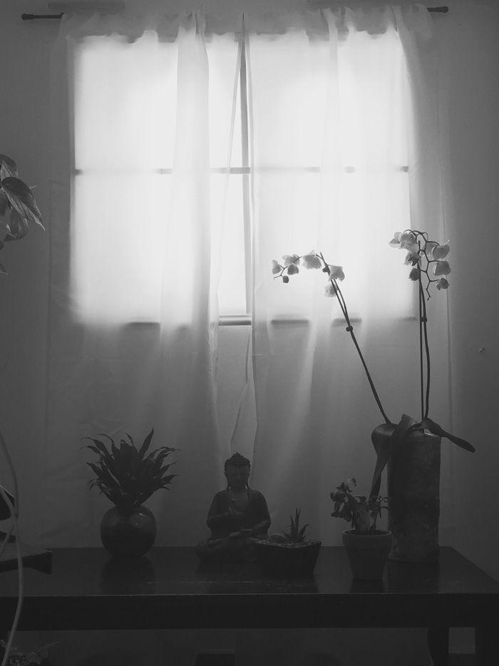 ventana-falsa-sotano-luces-led (9) | new room | Pinterest | Ventana ...
