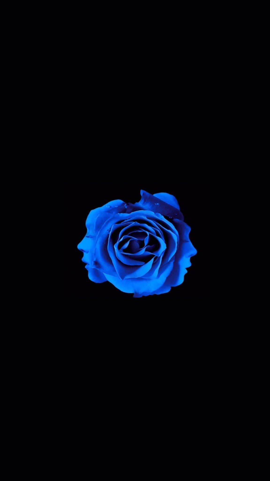 Mino S Blue Rose Wallpaper 3 Blue Roses Wallpaper Blue