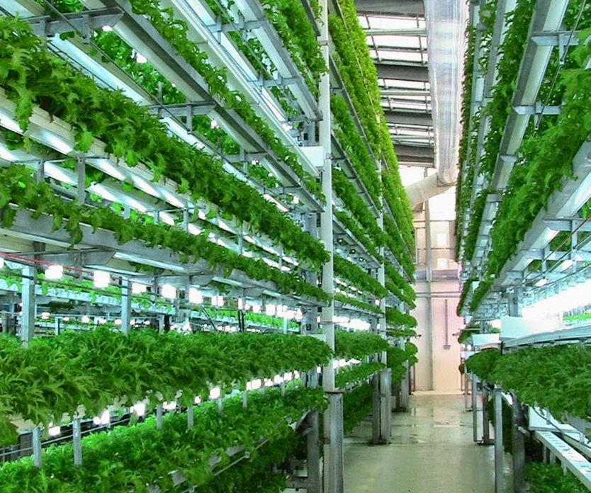 Taking Vertical Urban Indoor Farming Efficiency To The