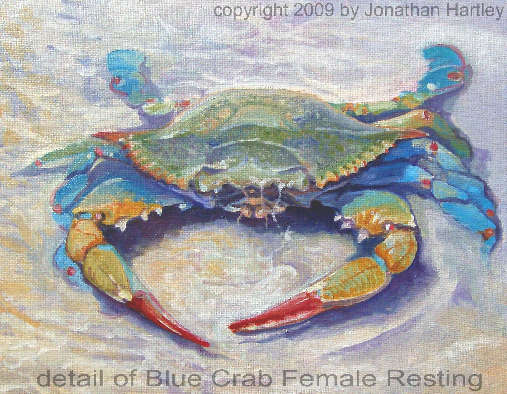 Blue Crab Painting It S A Blue Crab Washed Up In Crab Painting