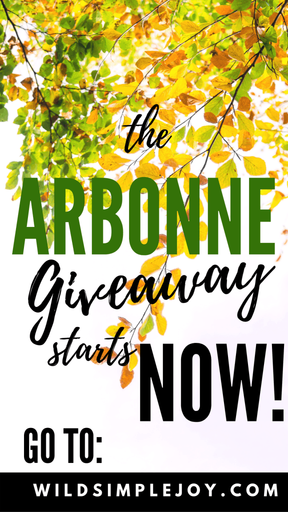 Arbonne Fizz Stick Giveaway from Wild Simple Joy! Join us NOW to learn how you can win 30 days of this amazing drink to fuel your mama-life!