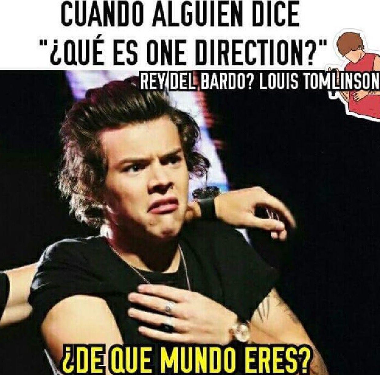 Memes De One Direction Memes De One Direction Memes Para Reir Momentos Divertidos One Direction