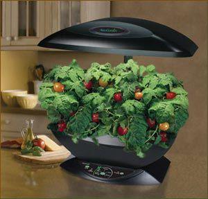 I Want An Aerogarden Rrreeeeaaaallllyyyy Bad Food 400 x 300