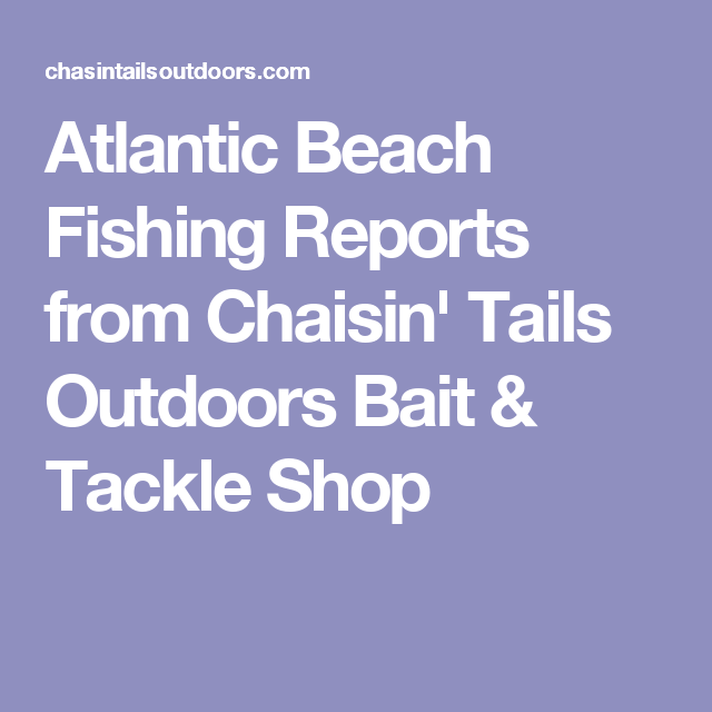 Atlantic Beach Fishing Reports from Chaisin' Tails Outdoors Bait & Tackle Shop