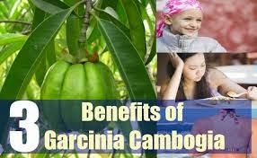 Natures bounty garcinia cambogia and coconut oil reviews
