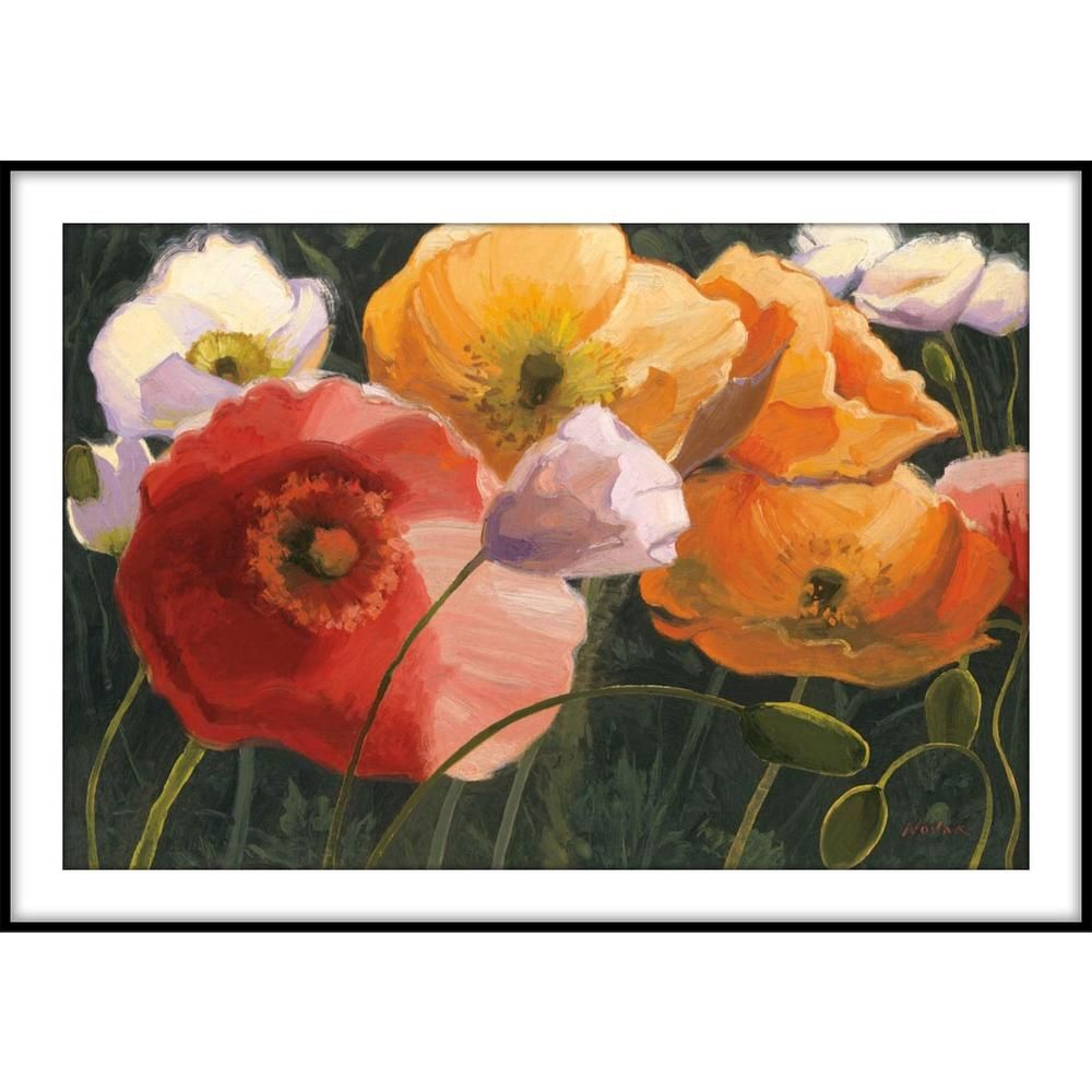 Ptm Images 9 75 In X 11 75 In Poppy Illumination Framed Wall