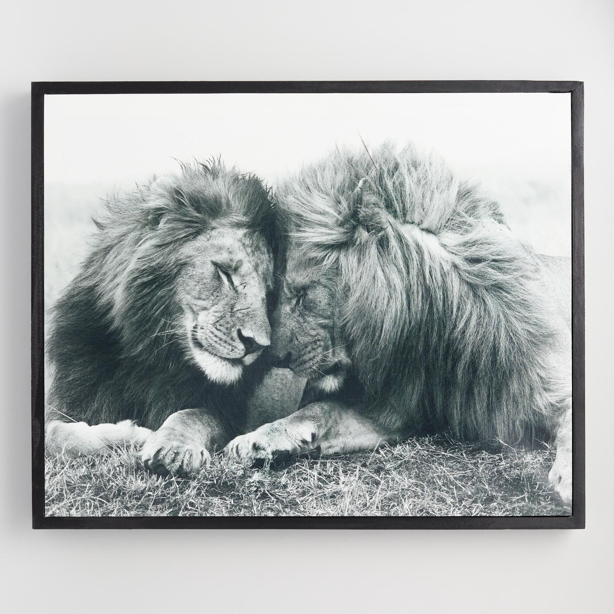 Lion pair by frank stober wall art by world market animals in 2019
