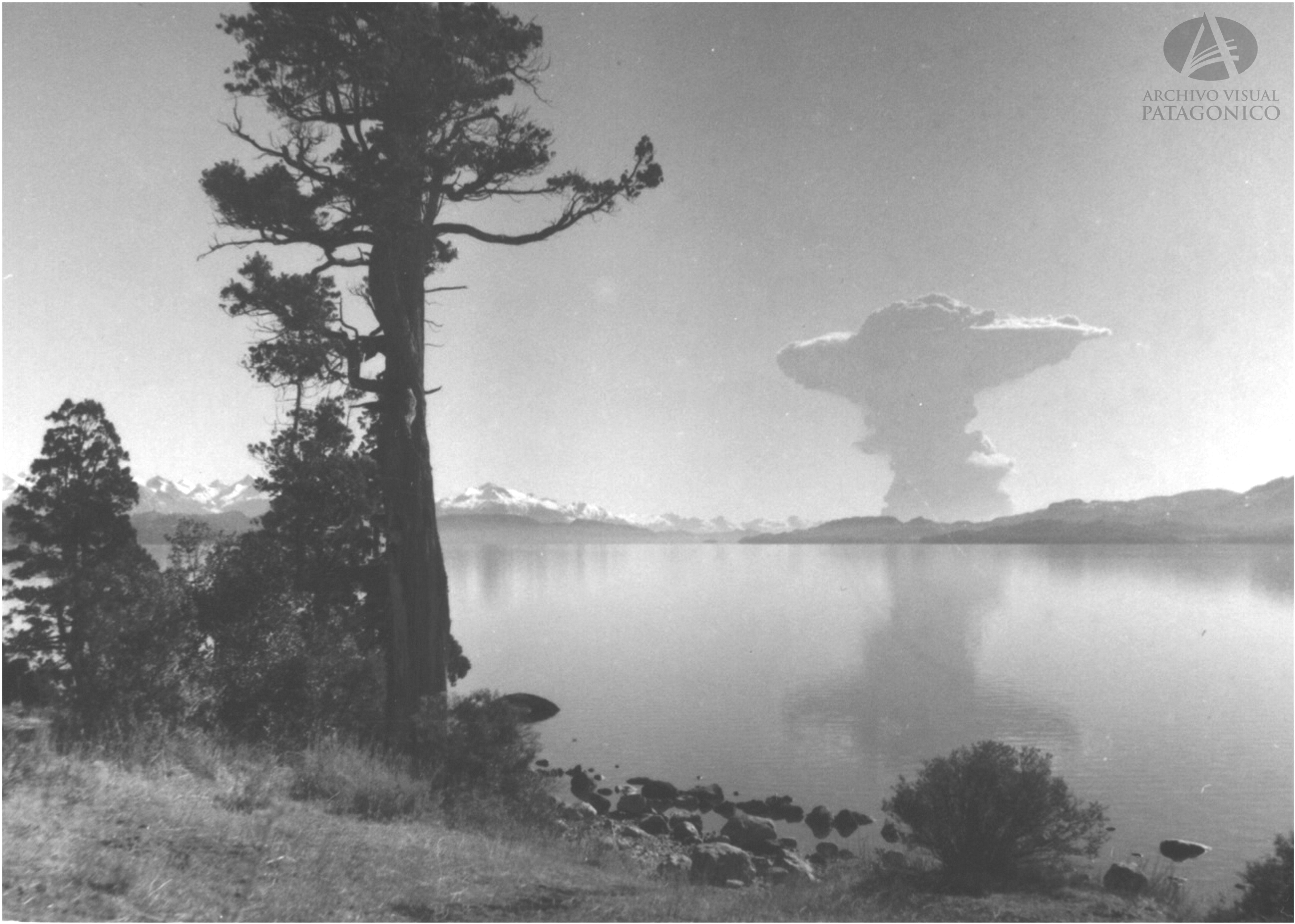 Erupci N Volcan Puyehue 22 5 1960 Col Lagos En Archivo Visual  # Muebles Puyehue