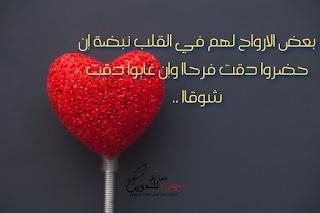 أجمل صور رسائل الحب والشوق Food Messages Peppercorn