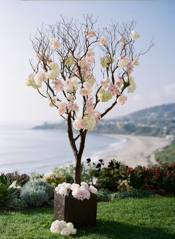 Tree Branches With Roses Ceremony Decor | Manzanita, Wedding and ...