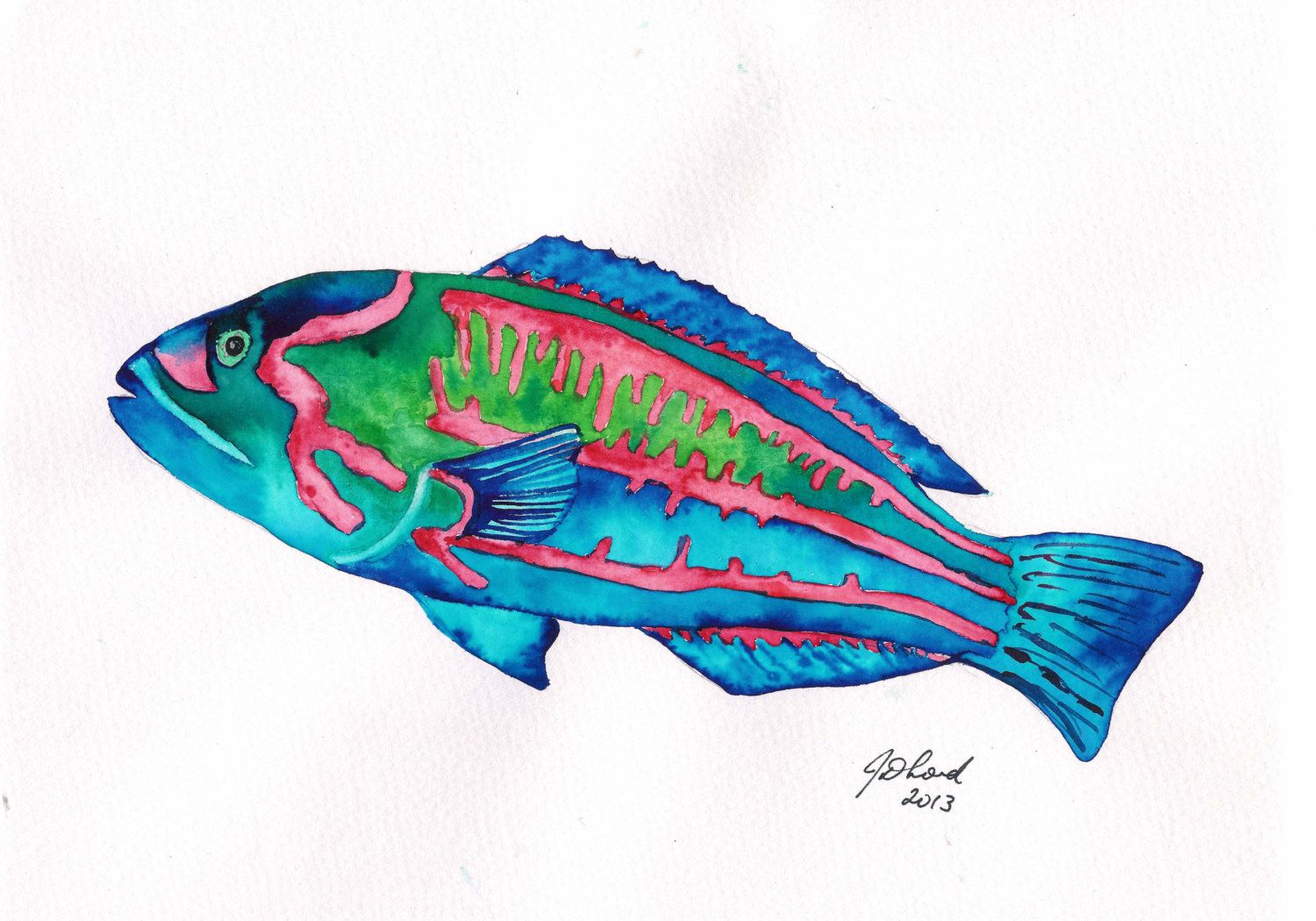 Watercolour Painting Study Of A Red And Green Wrasse Original