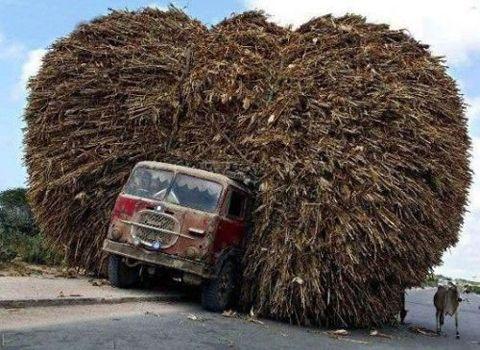 Overloaded Truck Fotos Locas Fotos Increibles Transporte
