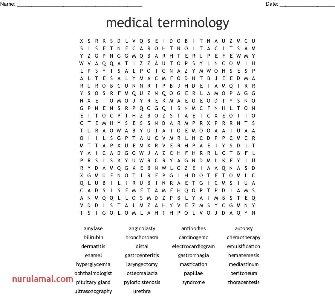 Medical Terminology Worksheets Printable