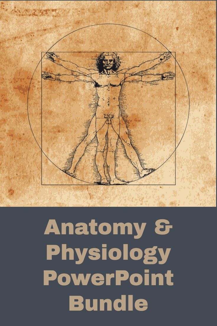 Anatomy and Physiology PowerPoint Bundle Digital Textbook | Awesome ...