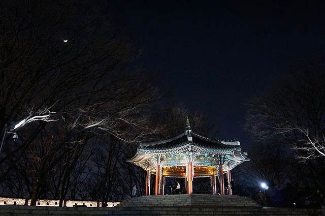 남산에서 🙂 the first tourist place that we visited in Korea 💕 . . . . #korea #architecture #travel #travelgram #namsan #nightphotography #night #nature #lights #photoshoot #photography #southkorea #여행스타그램 #여행에미치다 #한국 #남산 #밤 #일상그램 #감성사진 #맞팔해요 #소통해요 #인친 #인스타그램 #followforfollow #instagood by b4bygurl. 여행에미치다 #travelgram #namsan #소통해요 #감성사진 #인친 #일상그램 #여행스타그램 #인스타그램 #nightphotography #nature #night #travel #followforfollow #남산 #architecture #밤 #맞팔해요 #photoshoot #lights #korea #photography #한국…