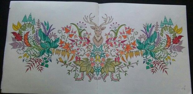 JohannaBasford EnchantedForest Colored With Barnes And Nobles Water Color Pencils Staedtler Noris Club Crayola