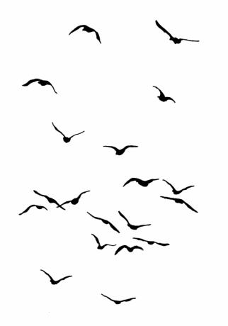 Birds 2 Flying Bird Silhouette Birds Painting Flying Bird Drawing