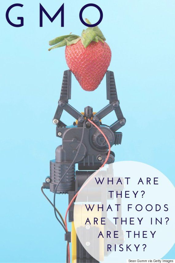 Genetically Modified Food What You Need To Know Genetically Modified Food Willpower Food
