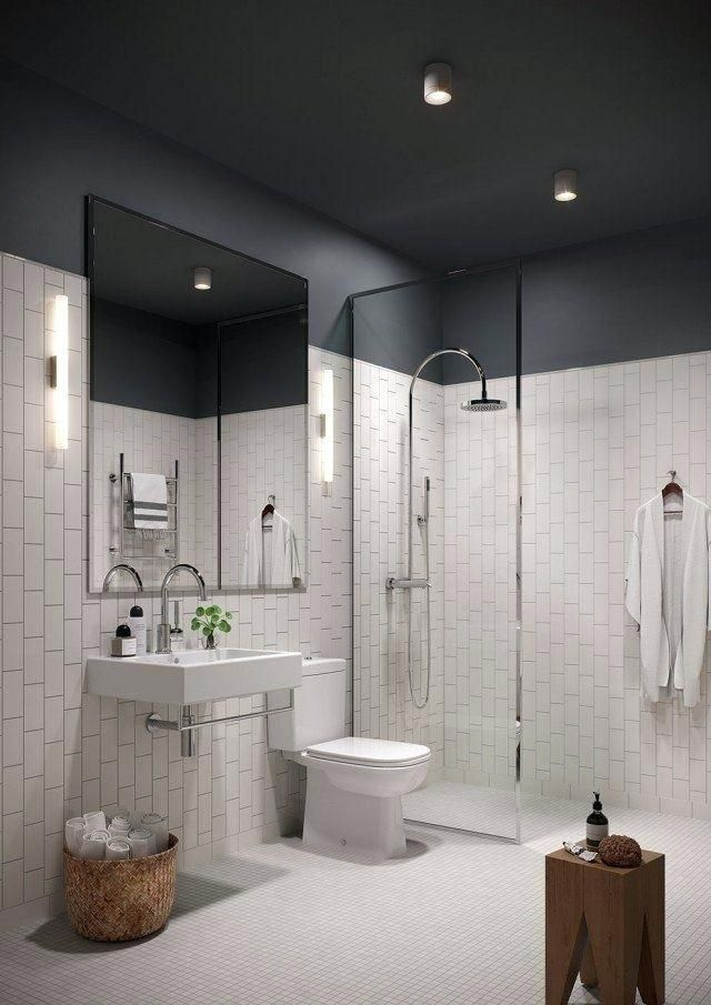 More Click Best Paint For Bathroom Ceiling Mould Best Bathroom Ceiling Paint B Small Bathroom Makeover Small Bathroom Remodel Bathroom Inspiration Colors