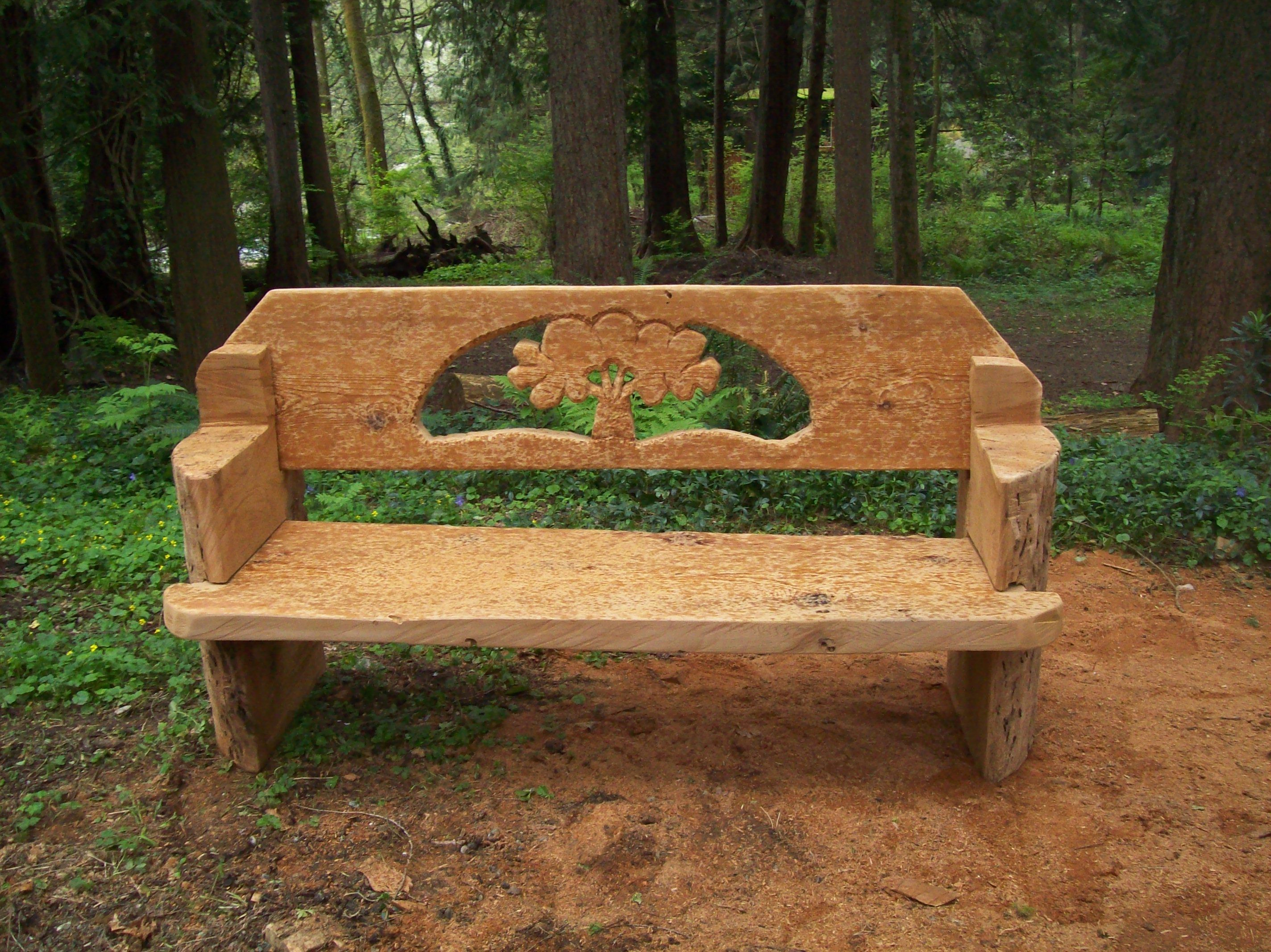 Tree bench chainsaw carved from one western red cedar log