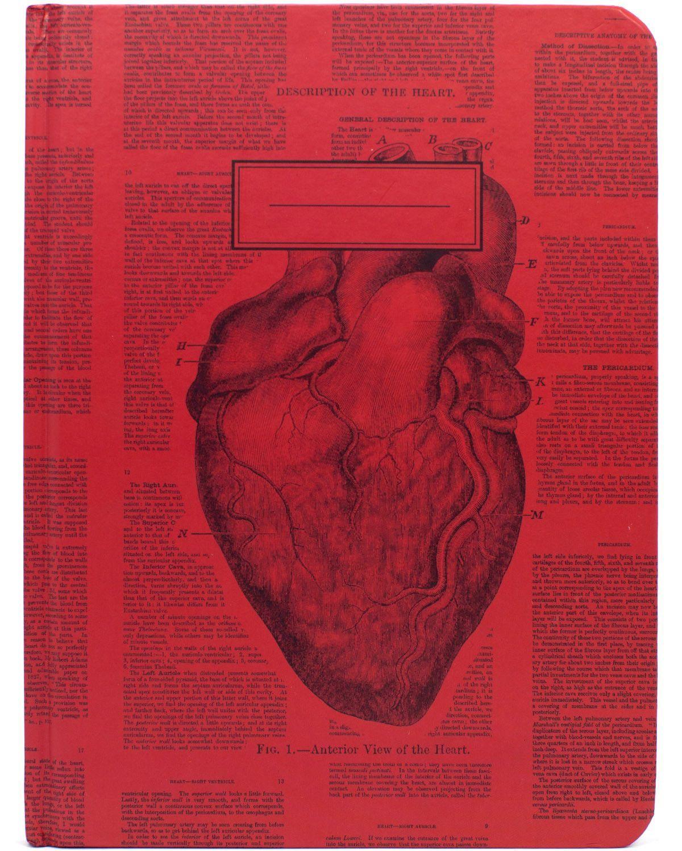 Anatomical Heart Hardcover Journal - Dot Grid | Pinterest