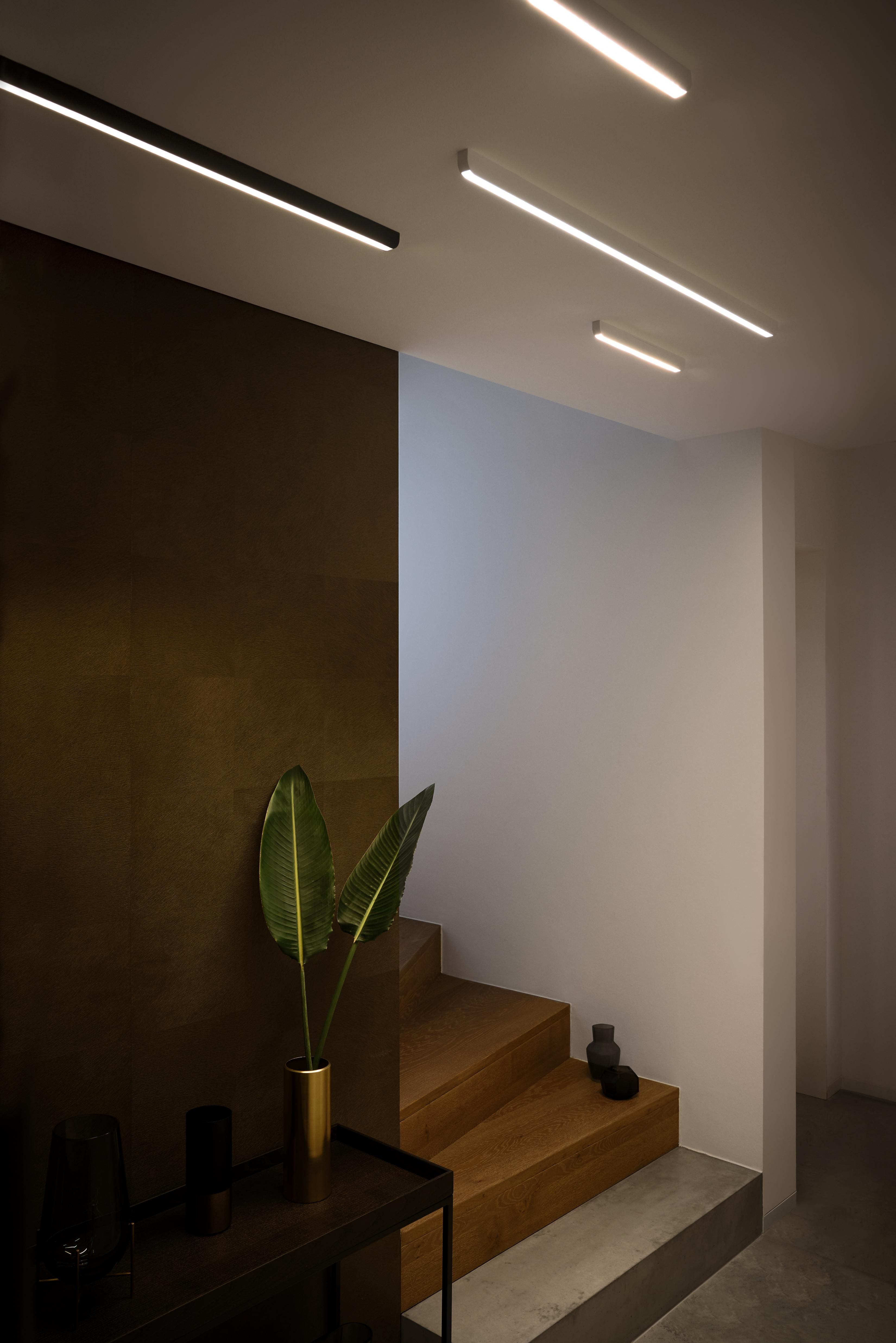 Minimalist Design Maximum Flexibility Mito Alto Is Versatile