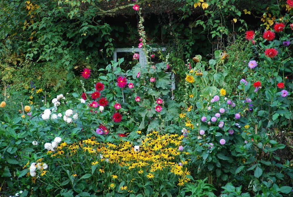 Bauerngarten Bauerngarten Pinterest Bauerngarten, Mein