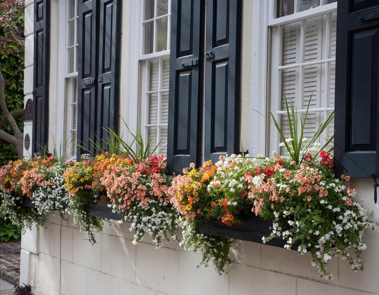 Trendige Blumenkasten Zum Nachpflanzen Garten 3